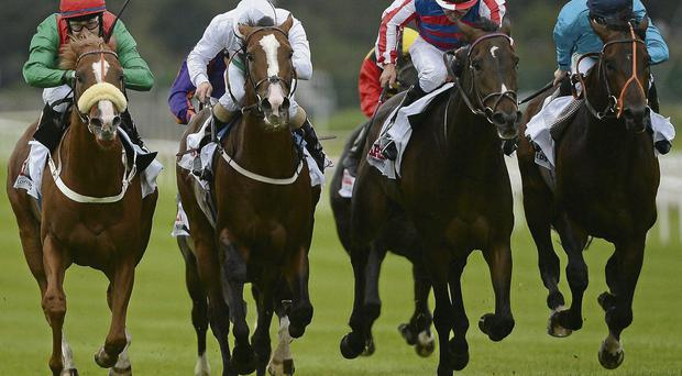 Royal Diamond and Niall McCullagh (second from right) edge out (from left) runner-up Massiyn, Aiken, and third-placed Brown Panther in last year's Irish St Leger – Johnny Murtagh's charge bids for back-to-back victories in tomorrow's renewal.