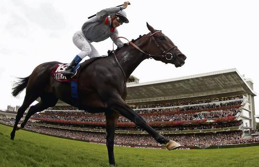 Treve and Thierry Jarnet in splendid isolation as they past the winning post in the Prix de l'Arc de Triomphe