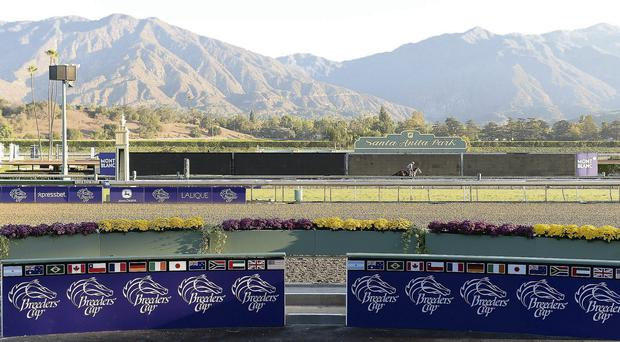 View from the winners circle during training in preparation for the Breeders' Cup World Championships at Santa Anita Park, California