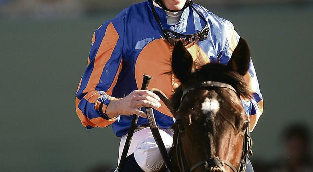 Aidan O'Brien's Magician and Ryan Moore left their rivals spellbound at Santa Anita