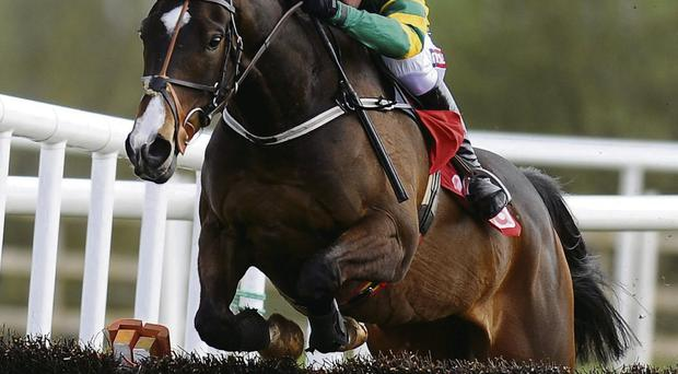 Jezki's supporters will be expecting to see another top class performance at Fairyhouse tomorrow