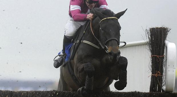 Sir Des Champs will need to be paying attention to prevail