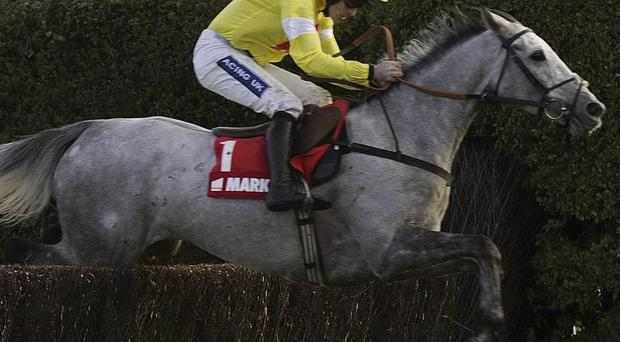 St Stephen's Day could be a grey day at Kempton as Al Ferof and Dynaste clash in the King George