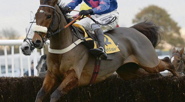 Cue Card likely to start King George favourite after his impressive Haydock success