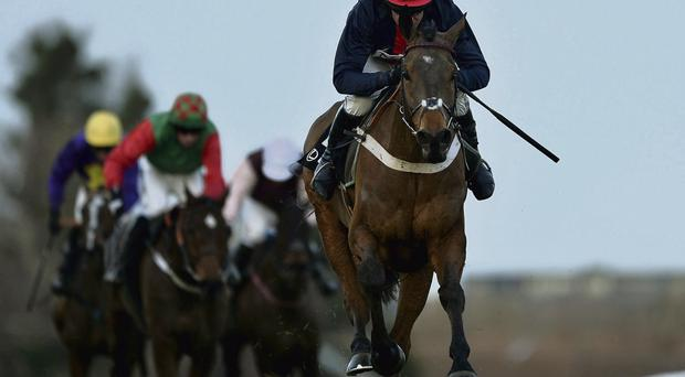Barry Geraghty and Bobs Worth race towards the finish to win the Lexus Steeplechase at Leopardstown