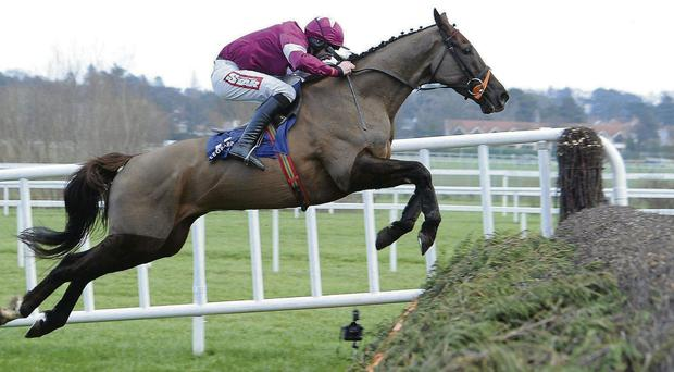Last Instalment will soon be returning to action for Philip Fenton SPORTSFILE
