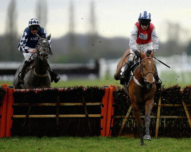 Barry Geraghty steers the Nicky Henderson-trained Big Hands Harry over the final flight as the pair go on to land yesterday's Physicool Novice Hurdle at Newbury by 10 lengths from Ziga Boy