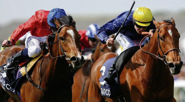 Esoteriqe and Maxime Guyon land the Dahlia Stakes at Newmarket for Andre Fabre