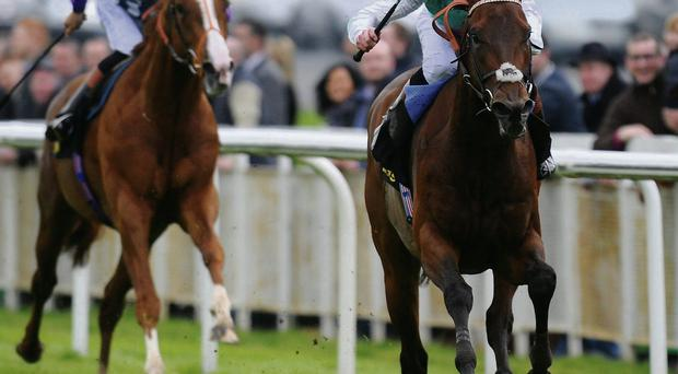 James Doyle pushes Kingman clear of runner-up Shifting Power to claim Saturday's 2,000 Guineas at the Curragh