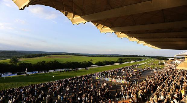 The view as runners near the finish at Goodwood racecourse