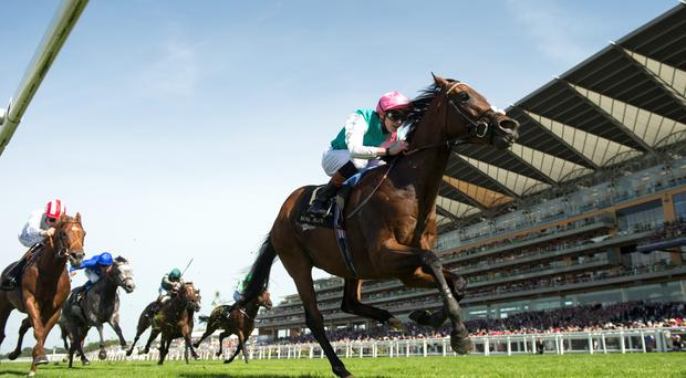 The magnificent Kingman and James Doyle completed a Group One four-timer in the Prix Jacques Le Marois at Deauville