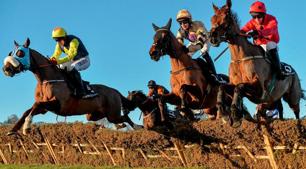 Willie Mullins is keeping his options open with three entries for Saturday's lucrative Betfair Handicap Hurdle at Newbury, including Lucky Bridle (centre)