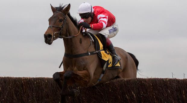 Bookmakers have installed Richard Johnson as the 7/4 favourite to succeed Tony McCoy as the England's champion jockey next season
