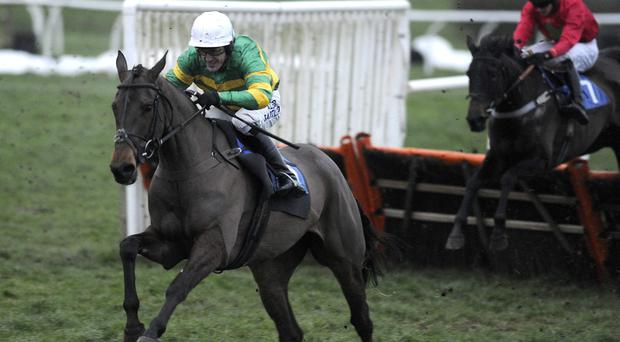 AP McCoy will spark a betting frenzy if he resumes his partnership with Shutthefrontdoor at Aintree
