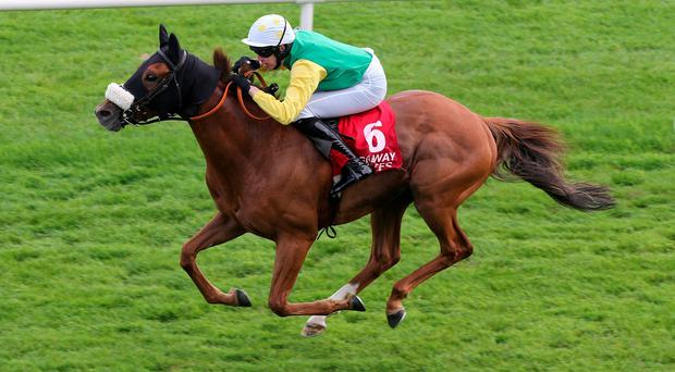 Quick Jack, winning on the Flat at Galway under Stephen Clements, is a possible for Cheltenham