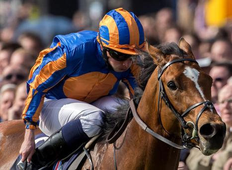 Ryan Moore will be hoping to partner Gleneagles to another victory at The Curragh today