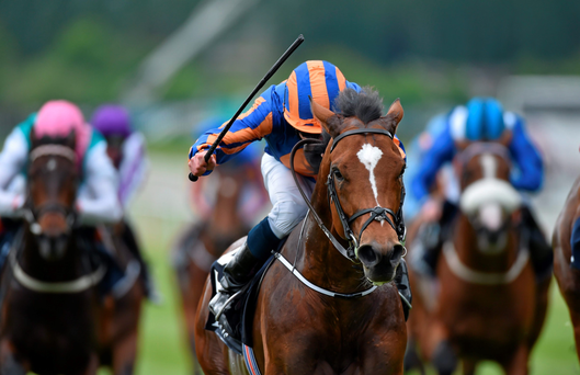 Ryan Moore and Gleneagles claiming victory at the Curragh