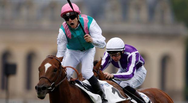 Vincent Cheminaud celebrates New Bay's French Derby victory from Highland Reel