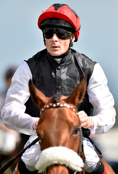 Free Eagle is poised to make a successful return for jockey Pat Smullen