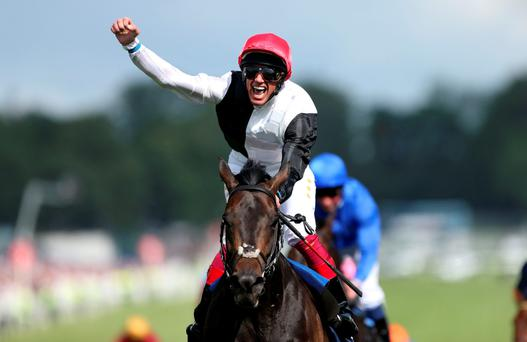 Frankie Dettori celebrates winning the Epsom Derby aboard this year's three-year-old pin-up Golden Horn