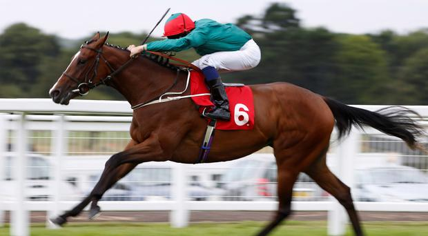 Fireglow, with William Buick on board, can follow up her success at Sandown with victory at Goodwood today