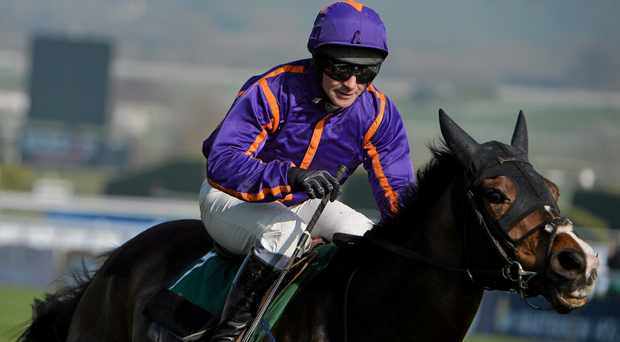 Arctic Fire will represent Willie Mullins at Fairyhouse this weekend