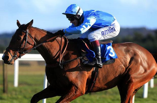 Fingal Bay is tipped to go close for the Philip Hobbs team in today's Hennessy at Newbury