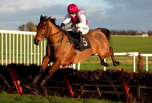Seabass (Katie Walsh) winning the David O'Halloran Memorial Rated Novice Hurdle (Photo: Patrick McCann)