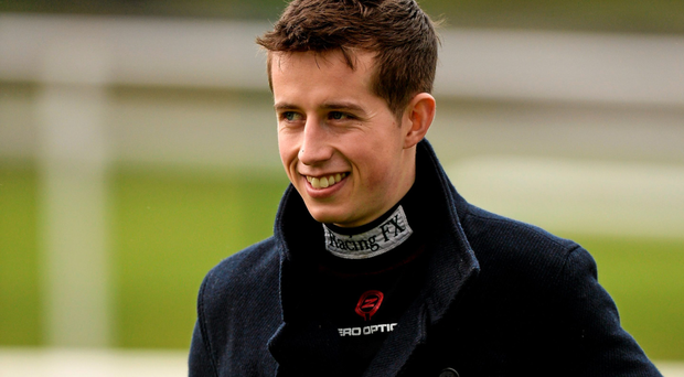 'Road to Riches strives to secure Noal Meade Bryan Cooper (pictured) their first Irish Gold Cup success' Photo: Sportsfile