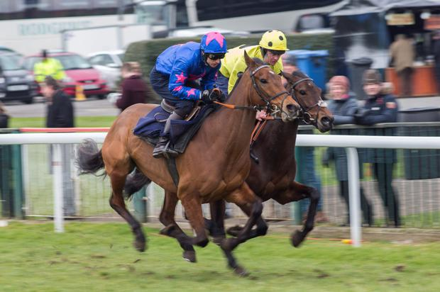 Cue Card ridden by Paddy Brennan (left) works with Morello Royale ridden by Joe Tizzard Photo: PA