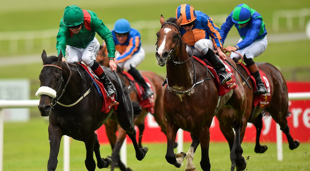 Harzand and Pat Smullen hold off the challenge of Idaho and Ryan Moore to win the Dubai Duty Free Irish Derby yesterday. Photo: Cody Glenn