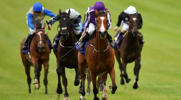 Minding, with Ryan Moore up, on their way to winning the Sea The Stars Pretty Polly Stakes at the Curragh. Photo: Cody Glenn/Sportsfile