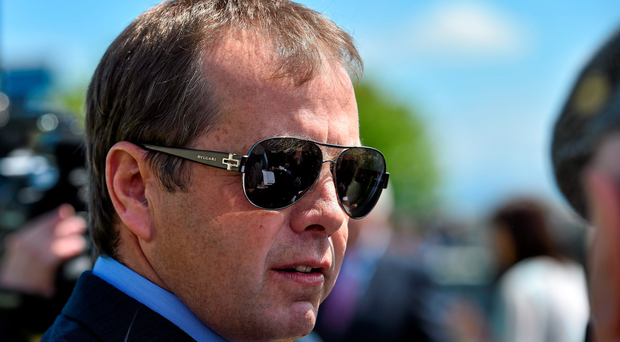 The second choice of Ger Lyons's (stock photo) two runners in the Group Three, Queen Catrine was sent off at 14/1 among a field of only six. Photo: Sportsfile