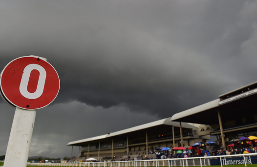 The Curragh. Photo: Paul Mohan/Sportsfile