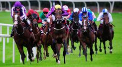 Right Honourable (front and centre), with Pat Smullen up, on the way to winning the galwayhotel.ie Maiden. Picture Credit: PA Wire