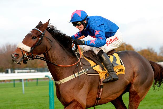 Paddy Brennan reports Cue Card to be in tip-top shape ahead of his mouthwatering clash with stablemate Thistlecrack