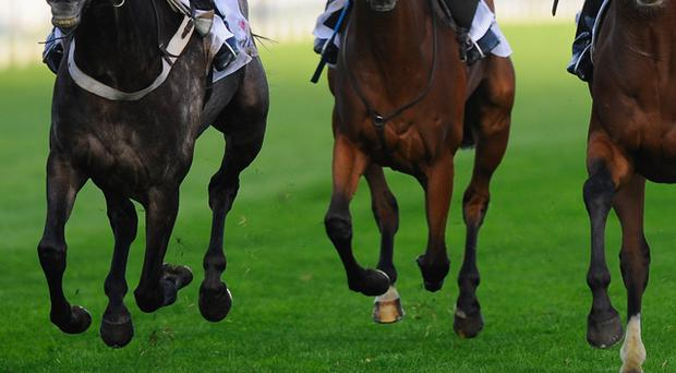 Val De Ferbet has been called some unfair names at times because he is not a serial winner but he is reliable and he scored at Limerick at Christmas. Stock image
