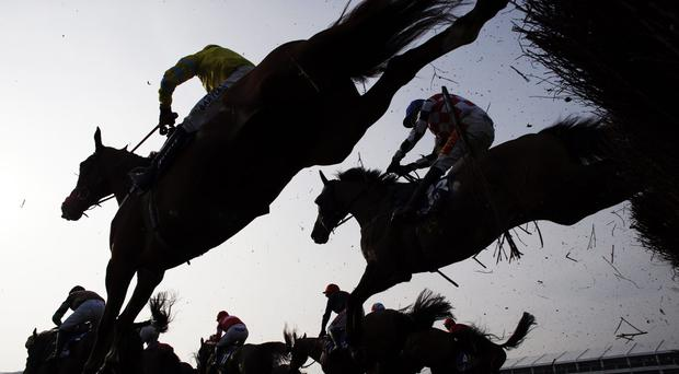 'Three horses rounded the home turn in with a chance, but it was clear Definitly Red had far more to give than Wakanda and Sego Success, jumping to the front with a bold leap four fences from the finish and soon putting daylight between himself and his rivals' (stock photo)