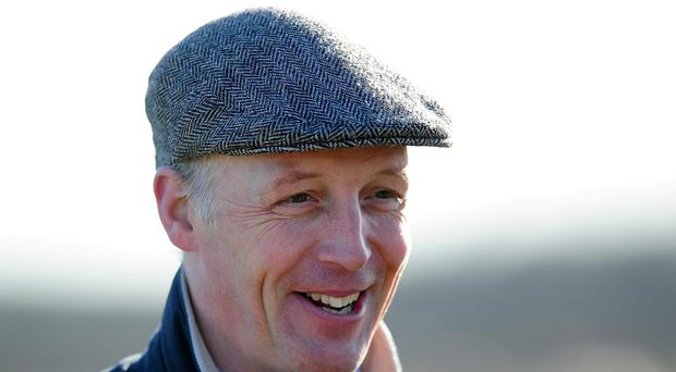 Trainer David Pipe. Photo: Getty Images