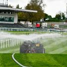 Watering taking place on the track ahead of today's start of the Punchestown Festival
