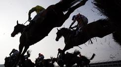 Ex Patriot, which finished a very solid fourth in the Triumph Hurdle at last season's Cheltenham Festival, bids to give weight and a beating to nine rivals in the Liam Healy Memorial Lartigue Hurdle at Listowel today. Stock photo: Getty Images