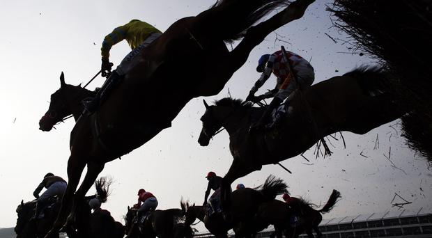The JP McManus-owned gelding will go off a short-priced favourite for today's Best Mate Beginners' Chase over two miles and an extended furlong. Stock image