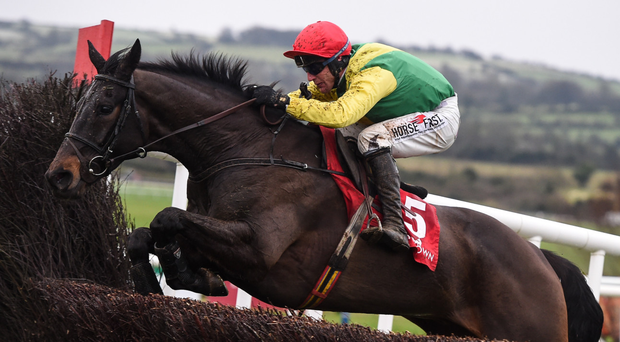 "Jessica Harrington says of Sizing John: ""We don't want to put too much pressure on him. I want him to do it on the day, not the day before. I don't want him leaving anything behind"""