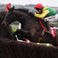 """Jessica Harrington says of Sizing John: """"We don't want to put too much pressure on him. I want him to do it on the day, not the day before. I don't want him leaving anything behind"""""""