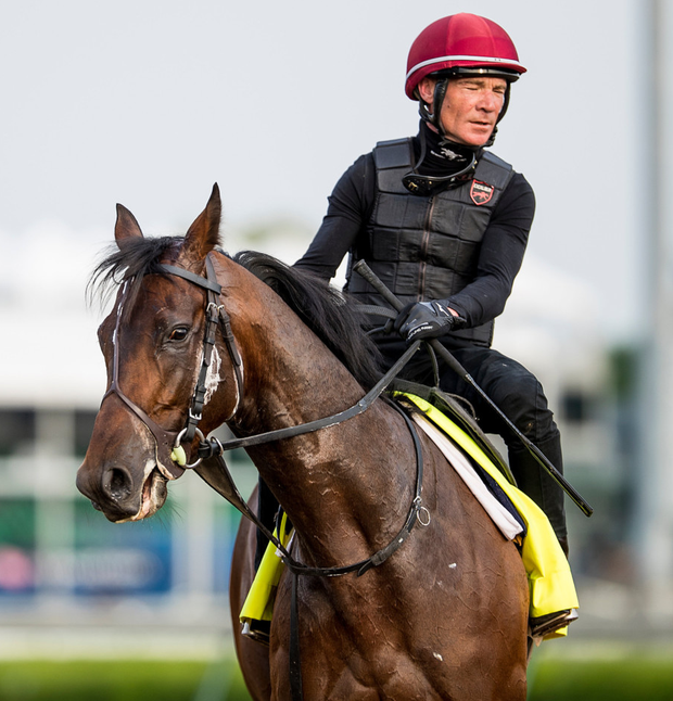 Mendelssohn with Dean Gallagher on track preparing for the Kentucky Derby at Churchill Downs on May 3, 2018 in Louisville, Kentucky. Photo: Getty Images