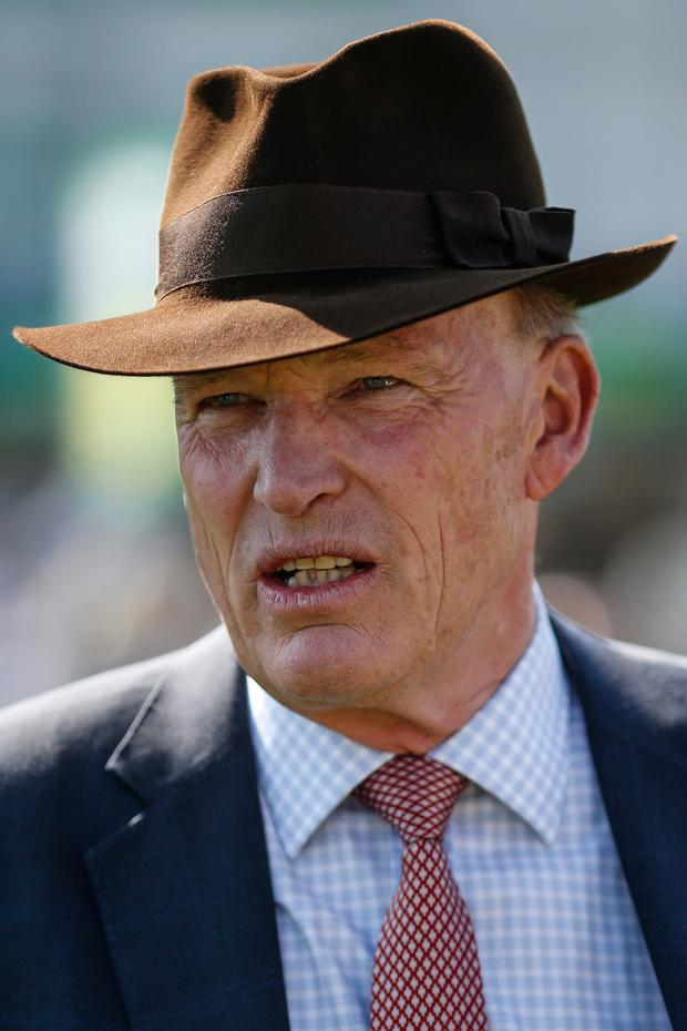 "Gosden: ""The owners are keen to go for the Derby and it's exactly where he's going."" Photo: Getty Images"
