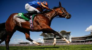 Clemmie has not run since winning the Cheveley Park Stakes at Newmarket in late September Photo: Getty
