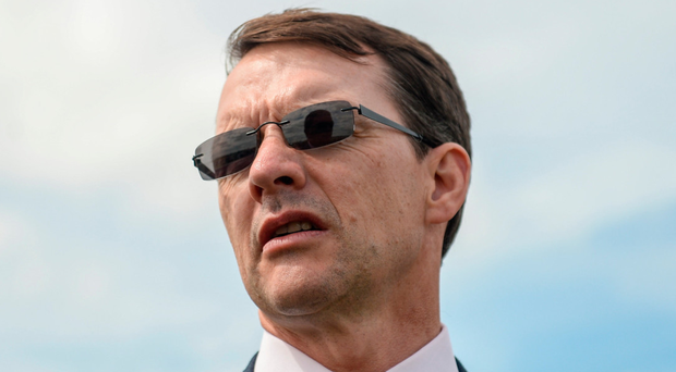 Aidan O'Brien claims sixth St Leger as Kew Gardens holds off Lah Ti Dar at Doncaster