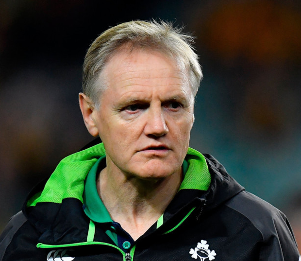 Joe Schmidt: eyes Curragh success. Photo: Sportsfile
