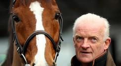 Willie Mullins with Faugheen at Closutton yesterday. Photo: INPHO/James Crombie